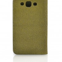 Samsung cover with Stingray skin